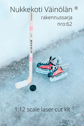 Ice hockey stick + puck